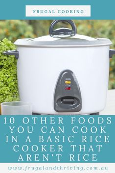 Rice isn't the only food you can cook in a rice cooker. This versatile and cheap appliance can cook a whole range of foods. Here are 10. #frugalcooking, quickcooking, ricecooker Frugal Recipes, Healthy Recipes On A Budget, Frugal Meals, Budget Meals, How To Stew Apples, Cheap Appliances, Dhal Recipe, Rice Cooker Recipes, Cup Of Rice