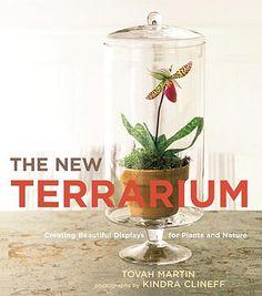 ++ the new terrarium.