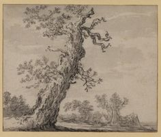 Landscape with oak tree  17th century  Goyen, Jan Josephsz. van