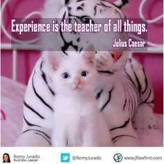 """Experience is the teacher of all things"" -Julius Caesar  www.JFLawFirm.com  www.MarinaTitle.com"