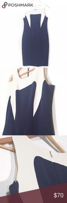 Rachel Roy Color Block Sheath Dress Gorgeous lined dress in perfect condition. Rachel Roy Dresses Midi
