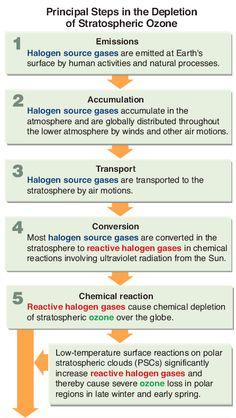 The Ozone Hole-Ozone Destruction Environmental Chemistry, Ozone Layer, Earth Surface, Destruction, Layers, Science, Activities, Geo, Random