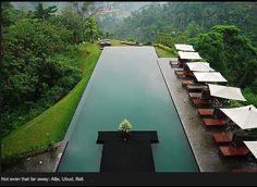 Infinity Pool- an infinity edge swimming pool located at the Ailia Ubud hotel in Ubud, Bali Amazing Swimming Pools, Swimming Pool Designs, Cool Pools, Epic Pools, Swimming Holes, Ubud Hotels, Ubud Villas, Infinity Pools, Ubud Bali