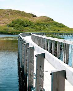 Prince Edward Island, National Parks, Beach, Instagram, Seaside, Beaches, State Parks
