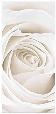 Bilderwelten Rosenbild Raumteiler White Rose Blumen 250x120cm inkl. transparenter Halterung: Amazon.de: Küche & Haushalt Household, Flowers