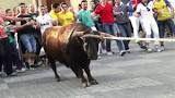A gentile richiesta...: La Spagna degli orrori: l'assurda tradizione del Toro Enmaromado