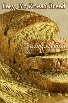 ... bianca babka no knead pizza bianca bread no knead pizza dough no knead