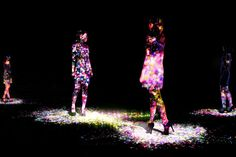 TeamLab: The Japanese Art Collective You Need To Know