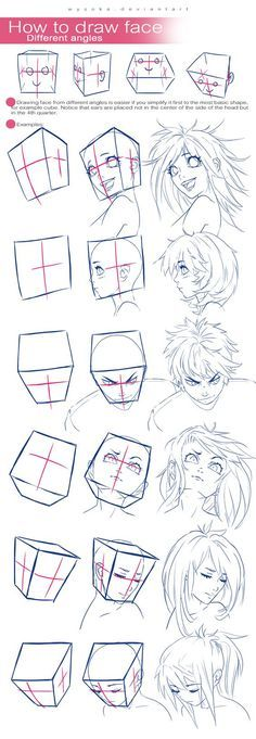Different head positions and directions they face