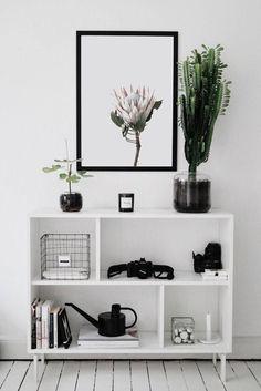 """King Protea"" Protea Print, Nature Print, Botanical Wall Art, Native Flowers, Nature Wall Art, Nordic Print, Protea Flower Print, Australian Native #homedecorideas #homedecoronabudget #homedecordiy #homedecorideasmodern #homeoffice #homedecor #homeideas #wallart #walldecor #wallartdiy #art #print #digital #natureprint #naturephotography #scandinavianprint #proteaprint #proteaflowerprint #proteawallart"
