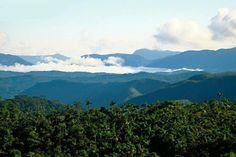 Amazonas valley