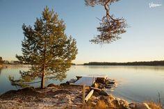 Sauna2 Villa Kuunari sijaitsee aivan meren rannalla Helsingin Jollaksessa. Vietä luonnon helmassa erilaiset juhlat, kokoukset, saunaillat.