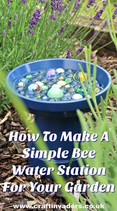 To Make A Simple Bee Water Station For Your Garden Support the bees in your garden while adding a pop of colour, with our DIY bee water station.Support the bees in your garden while adding a pop of colour, with our DIY bee water station. Garden Types, Organic Gardening, Gardening Tips, Gardening Services, Vegetable Gardening, Gardening Scissors, Permaculture Garden, Beginners Gardening, Backyard Beekeeping