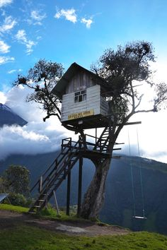 La Casa del Àrbol (Tree House). A one of a kind tree house with the swing at the end of the world. The house was built at the property of th...