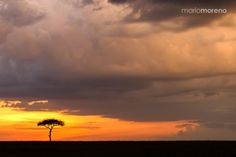 Drama Sunset - A dramatic sunset in the Mara North Conservancy in Kenya captured while hosting the ongoing Maasai Mara Photographic Safari with www.southcapeimages.com If you would like to join an upcoming departure please contact me and I will give you all the details.