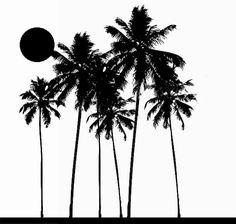 Afbeeldingsresultaat voor palmboom