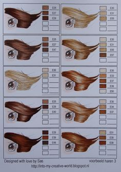 Copic, hair.
