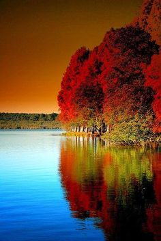 Intensely deep Autumn colors