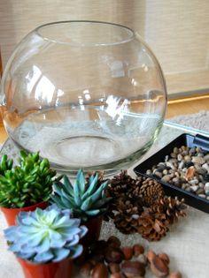 Succulent Arrangements Glass Cactus Ideas For 2019 Cactus Terrarium, Build A Terrarium, Terrarium Containers, How To Make Terrariums, Terrarium Supplies, Reptile Terrarium, Plants In Glass Bowl, Glass Cactus, Glass Planter