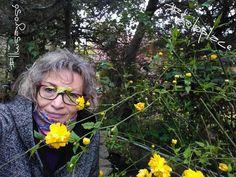 Las flores,principio activo de la naturaleza,orígen de los diseños de las holos. www.holoplace.net/info