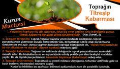 Iman, Charles Darwin, Evolution, Herbs, Website, Herb, Medicinal Plants
