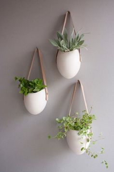 Leather and ceramic planters-finally a place for an indoor herb garden!