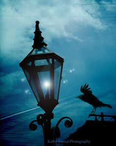 Gothic Surreal Photography, Eerie Fantasy Raven Print, Dark Blue Raven Street Lamps, Gothic Ravens Night Lanterns, Gothic Blue Raven Print by KathyFornal on Etsy https://www.etsy.com/listing/160925610/gothic-surreal-photography-eerie-fantasy