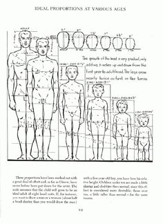 Proportions for different age groups, 'Figure Drawing for All It's Worth' by Andrew Loomis