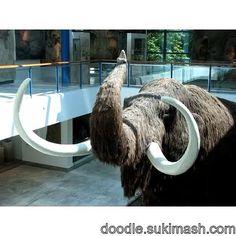 #mammoth #doodle #art http://doodle.sukimash.com/file/view/8295