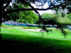Merion Golf Club - Par 3, 13th hole