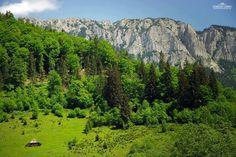 Satul Sătic, Câmpulung Muscel    Foto: Adrian Chiru    Surprising Romania - impreuna promovam frumusetile Romaniei!