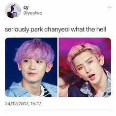 Which do you prefer I couldn't care less all I know that this is Park Chanyeol not Park Chanyeol the really tall guy from EXO. Exo Memes, Kdrama Memes, Funny Kpop Memes, Chanbaek, Exo Ot12, Chanyeol Baekhyun, Park Chanyeol, Kpop Exo, Kris Wu