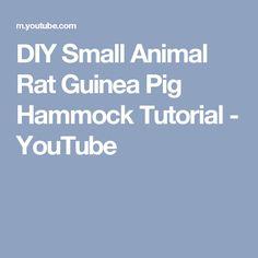 DIY Small Animal Rat Guinea Pig Hammock Tutorial - YouTube