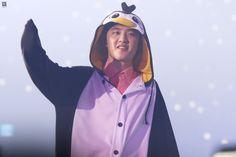 Btw guys, I met Kyungsoo at the Mini Japanese Store in Miniso🤣 he is so very cute and sweetiest penguin ever! Kyungsoo, Chanyeol, Kaisoo, Exo Korean, Korean Boy, K Pop, Penguin Costume, Exo Luxion, Kpop Memes