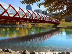 Peace Bridge is a pedestrian bridge, designed by Spanish architect Santiago Calatrava, that accommodates both pedestrians and cyclists crossing the Bow River in Calgary, Alberta, Canada Santiago Calatrava, Calgary, Monuments, Love Bridge, Bridge Design, Pedestrian Bridge, Belle Villa, Covered Bridges, Beautiful Places