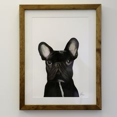 Gilbert the French Bulldog - For Me by Dee