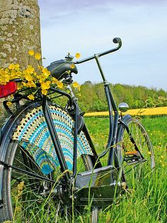 Dress Guards for bicycle wheels, hmm