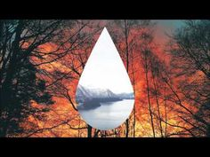 Clean Bandit - Tears ft. Louisa Johnson [Official Snippet] - YouTube