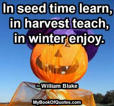 In seed time learn