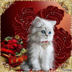 See the PicMix Chat belonging to scribasinlove on PicMix. Kittens Cutest, Cats And Kittens, Cute Cats, Funny Cats, Kitten Images, Gato Gif, Beautiful Kittens, Image Chat, Cute Good Morning