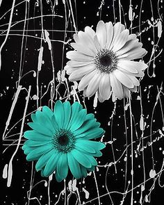 Modern Black White Girl Poster Canvas Wall Painting Pictures Home Decor Teal Flowers, Black And White Flowers, Acrylic Flowers, Black And White Painting, Rose Wallpaper, Wallpaper Backgrounds, Wallpapers, Sunflower Pictures, Splash Photography