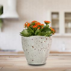 The 5 In. Rustique planter is an excellent choice for it's versatility. Made of ceramic clay and hand glazed, the Rustique is perfect for succulents or a hardy indoor houseplant. At home in a contemporary, rustic or farmhouse setting, the Rustique will make a statement with its curved lip and unique concrete color finish.