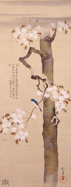 "Sakai Hoitsu, ""Small Bird and Cherry Tree"" Late Edo Period (19th century), Japan"