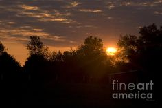Hello SunShine.     I hope you enjoy these moments in time that have been captured.     Stop by and check out some of my other Galleries on Fine Art America. Just simply search for Thomas Woolworth.     Photographer (1977), Digital Artist and Owner V'CAD Support (since 1987). email: Tom510@aol.com