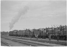 Evakkojuna lähdössä Riihimäeltä pohjoiseen.  Riihimäki 27.6.1944. SA-kuva-arkisto.