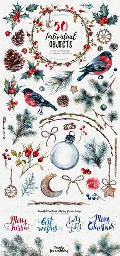 Mr.Bullfinch Watercolor ClipArt Xmas by The Southpaw Art Shop on @creativemarket #watercolor #art #painting #inspiration #ideas #christmas
