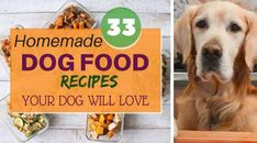 33 Best Homemade Dog Food Recipes that are Natural and Organic. These recipes are Vet Approved and Healthy for your Dog/Puppy.
