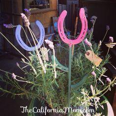 California Ranch spring good luck #horse shoes