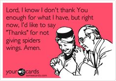 Lord, I know I don't thank You enough for what I have, but right now, I'd like to say 'Thanks' for not giving spiders wings. Amen.