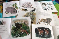 Первые книги о природе